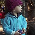 Zoo_nursinggorillas